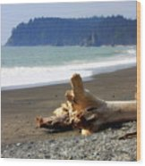 La Push Beach  Wood Print
