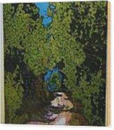 La Romita Road Wood Print