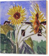 La Romita Sunflowers Wood Print