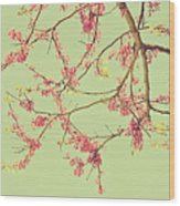 Le Rose' Arbre Wood Print
