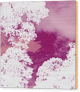 La Vie En Rose Wood Print