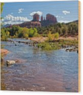 Lab In River At Sedona Arizona Wood Print