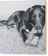 Labrador Samy Wood Print