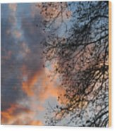 Lace In The Sunset Wood Print