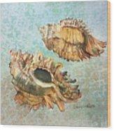 Lace Murex Wood Print