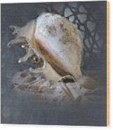 Lace Murex Sea Shell In Blue 2 Wood Print