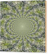 Lacey Kaleidoscope Wood Print