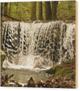 Lacy Waterfall Wood Print