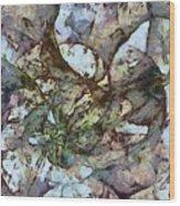 Ladderlike Taste  Id 16098-014755-31540 Wood Print