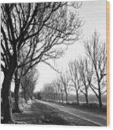 Lady Anne's Drive, Holkham Wood Print