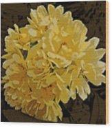 Lady Banks Rose Cluster Wood Print