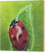 Lady Bug II Wood Print