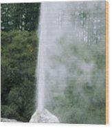 Lady Knox Geyser Erupting Wood Print