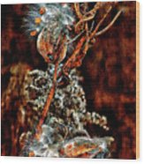 Lady Of The Dance II  Wood Print