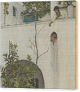 Lady On A Balcony, Capri Wood Print