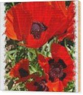 Ladybird Poppy Wood Print