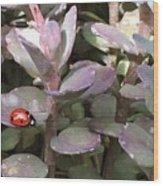 Ladybug Garden Wood Print