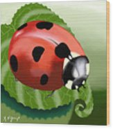 Ladybug On Leaf Wood Print
