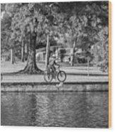 Lafreniere Park 3 - Bw Wood Print