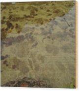 Lago Transparente Wood Print