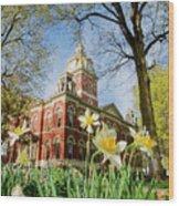Lagrange County Courthouse Wood Print