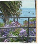 Laguna Beach, Southern California 11 Wood Print