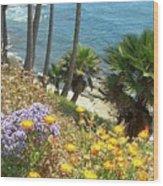 Laguna Beach, Southern California 12 Wood Print