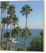 Laguna Beach, Southern California 2 Wood Print