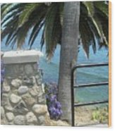 Laguna Beach, Southern California 9 Wood Print