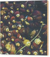 Laguna Beach Tide Pool Pattern 1 Wood Print