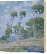 Laguna Trees Wood Print