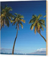 Lahaina, Five Coconut Tre Wood Print