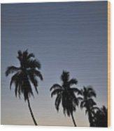 Lahaina Sunset Wood Print by Kelly Wade