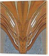 Lahar Wood Print