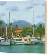 Lahina Harbor Wood Print