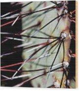 Lajitas Cactus No. 2 Wood Print