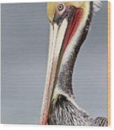 La Jolla Pelican Wood Print