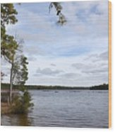 Lake 395 Wood Print