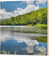 Lake Agua Blanca Wood Print