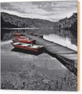 Lake And Boats Wood Print