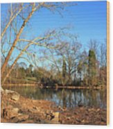 Lake And Trees In Early Spring Wood Print