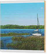 Lake At Hamony Fl Wood Print