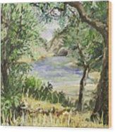 Lake At St Remy Wood Print