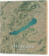 Lake Balaton 3d Render Satellite View Topographic Map Wood Print