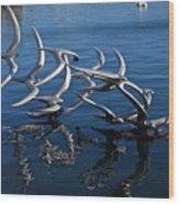 Lake Birds Wood Print