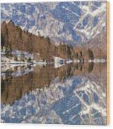 Lake Bohinj Wood Print