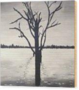 'lake Bonney' Wood Print