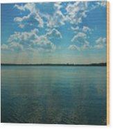 Lake Calhoun 3804 Wood Print