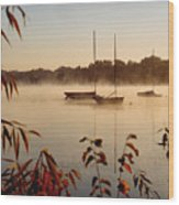 Lake Calhoun Wood Print