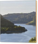 Lake Chabot On A Sunny Day Wood Print